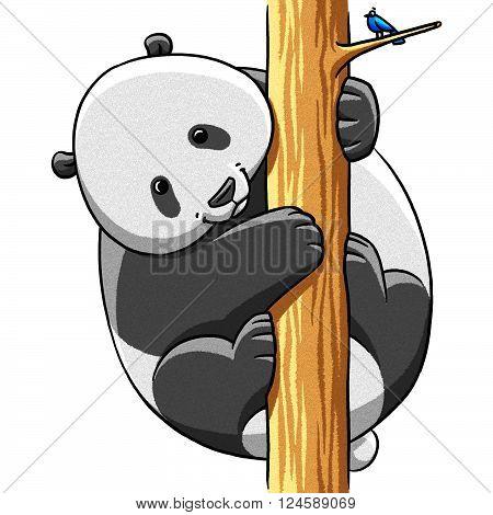 funny cartoon cute cool fat panda bear illustration