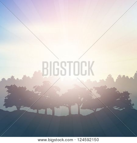 Silhouette of trees in the countryside