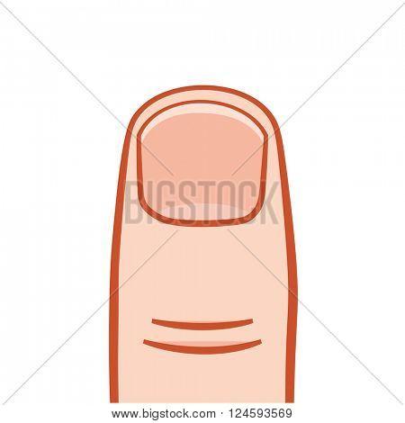 vector big finger illustration