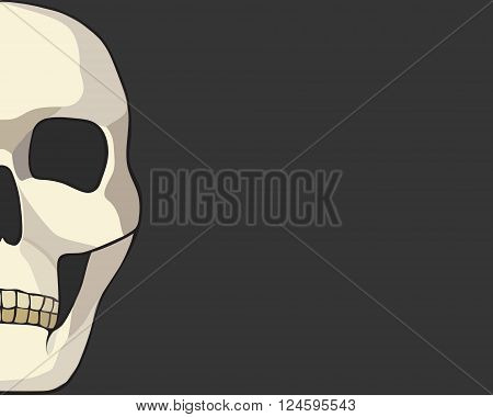 human skull or grim reaper deaths head illustration, vector