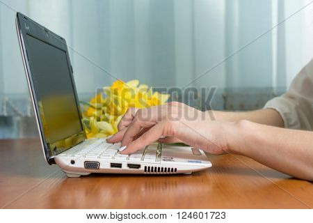 Female Hands Typing At A Lap Top