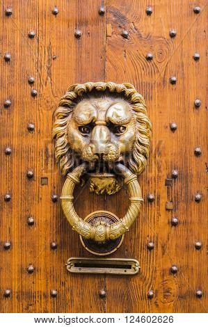 Brass lion Head Door Knocker, Ancient Knocker