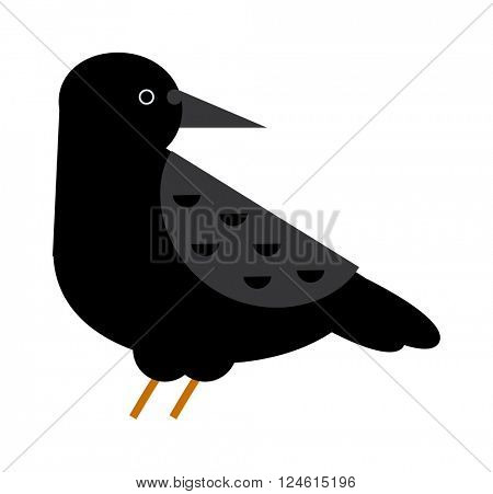 Carrion crow raven with wide-spread wings black beak nature feather wild dark bird vector.