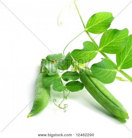 peas isolated on white background macro close up