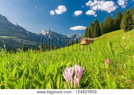 Idyllic Mountain Landscape