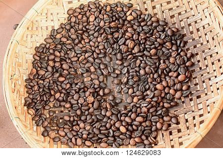 Coffee is on the threshing basket on nature background.