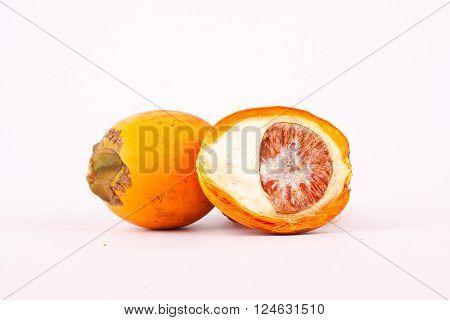 Betel nut is a medicinal plant ( fruit )