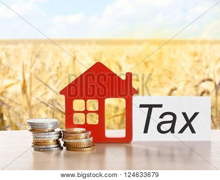 House figure, coins and tax sign on field background