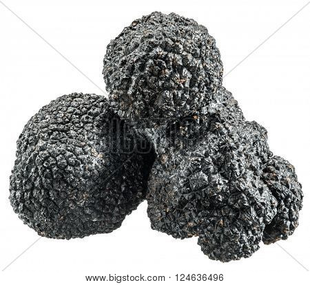 Black truffles. File contains clipping paths.