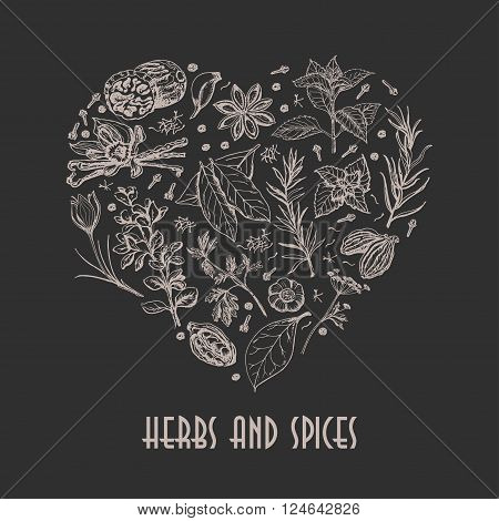 Isolated heart from spices and herbs on black background. Vector  illustration for your design