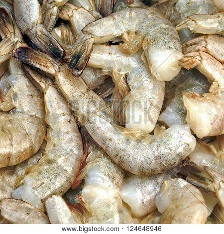 Many Raw Green King Size Shrimps On White Background