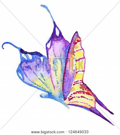 Abstract Watercolor hand drawn purple butterfly. Hand painted watercolor butterfly in Hires.