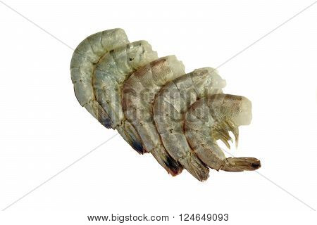 Many Raw King Shrimps Laying In Row Isolated On White