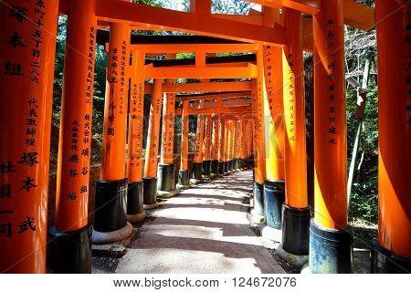 Kyoto, Japan - March 16, 2016 - Crimson torii gates over a path at Fushimi Inari-taisha in Kyoto, Japan