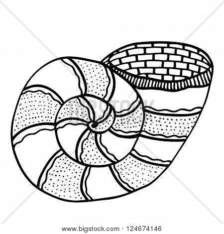 Zentangle stylized shell. Hand Drawn aquatic doodle vector illustration. Sketch for tattoo or makhenda. Seashell collection. Ocean life.