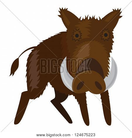 vector illustration of boar - wild pig forest animal.