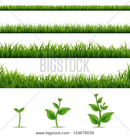 Grass Borders Big Set With Gradient Mesh, Vector Illustration
