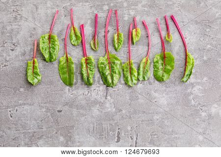 fresh beetroot leaves - fruits and vegetables