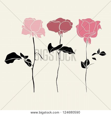Vector set of pink and red roses illustraton