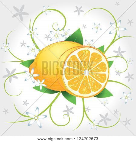 Lemons whole and slices with leaves and blossom