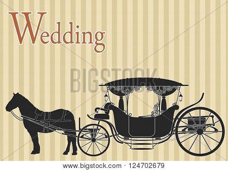 Beautiful wedding carriage drawn by horses on striped background