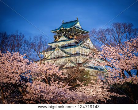 Osaka castle among cherry blossom trees (sakura) in the evening scene after sunset with dark blue sky and light. Osaka castle is a public domain, no restrict in copy or use. (selective focus on the castle with blurry foreground of branches and cherry blos