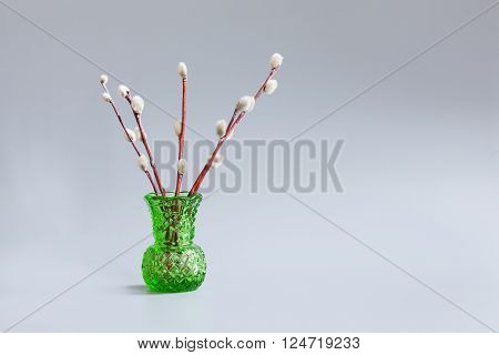 Green vase with twigs of willow on a gray background. Palm Sunday holiday concept, pussy-willow tree branches.