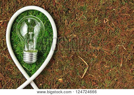 Green energy. Concept ecology. Light bulb on green natural moss with copy space
