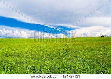 Scenic View Vibrant Nature