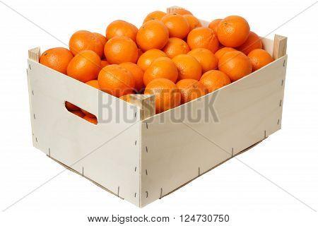 Plywood box full of mandarins isolated on white background