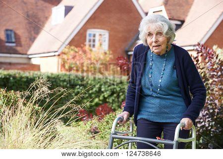 Senior Female In Garden Using Walking Frame ** Note: Soft Focus at 100%, best at smaller sizes