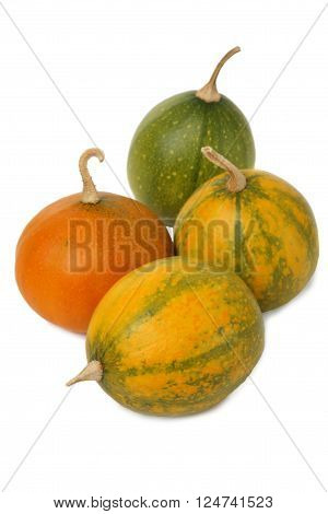 Small ornamental pumpkins isolated on white background