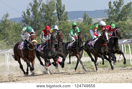 Horse race for the prize Big Summer in Pyatigorsk,Russia.