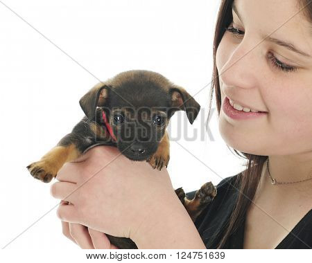 Closeup of a pretty young teen admiring the tiny, mixed breed puppy she holds in her hands.  On a white background.