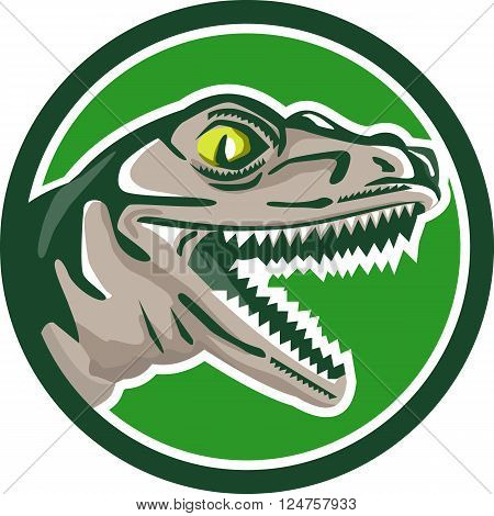 Illustration of a raptor t-rex dinosaur lizard reptile head viewed from side set inside circle on isolated background done in retro style.