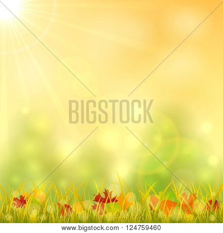 Autumn background with fallen leaves in the grass and bright sun in the sky, illustration.