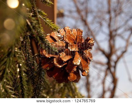 Closeup of a glittered pinecone on a green pine bough garland decorating a shop front or home at Christmas.