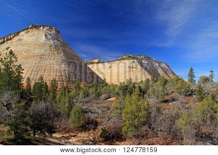 Checkerboard Mesa in Zion National Park, Utah