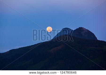 Night and full moon in Sniharaja rainforest. Sri Lanka