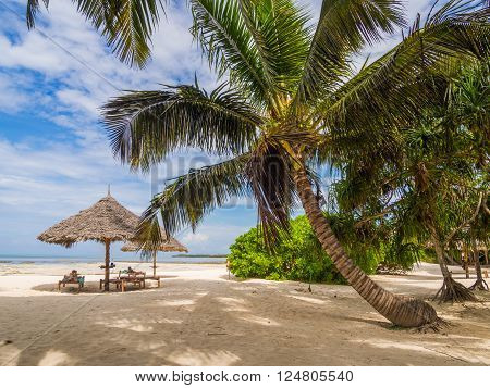 PONGWE ZANZIBAR - APRIL 01 2016: Beach next to one of the resorts in East Zanzibar Tanzania.