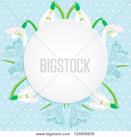 Vector business and personal cards with a spring theme blue and white color primroses snowdrops and crocuses