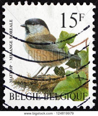BELGIUM - CIRCA 1997: a stamp printed in the Belgium shows Willow Tit Poecile Montanus bird circa 1997