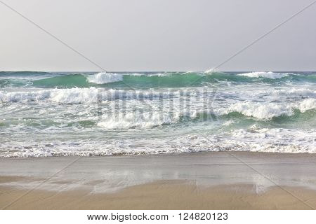 Big waves with white foam on the shore.