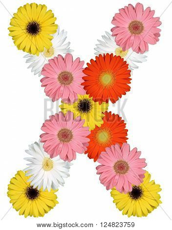 Letter X Alphabet From Flowers Isolated On White