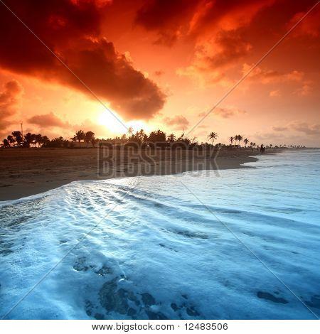 ocean sunrice