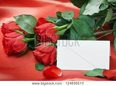 red roses and white card with a place for a congratulatory text on a red background