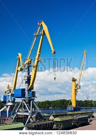 crane makes loading cargo in the port dock