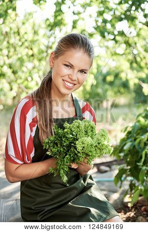 Smiling female farmer holding organic lettuce in vegetable garden. Concept of eco products cultivation.