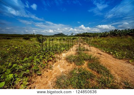 Rural tropical road through the valley with clouds and blue sky