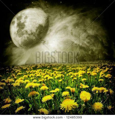 Moon Over Dandelion Field